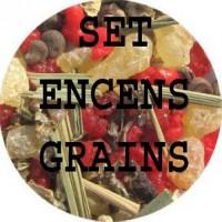 Set 5 Encens : Amitié, Partenaire, Réputation, Richesse, Nettoyage