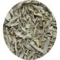 Sauge blanches  feuilles séchées