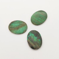 Chrysocolle ovale aplatie